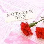 母の日にプリザーブドフラワーを贈ろう!保存の基礎知識やホコリのつかないオススメ商品